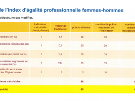 indexe d'égalité professionnelle